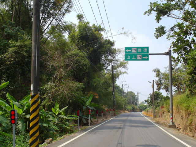 蘭科植物園  (65).JPG