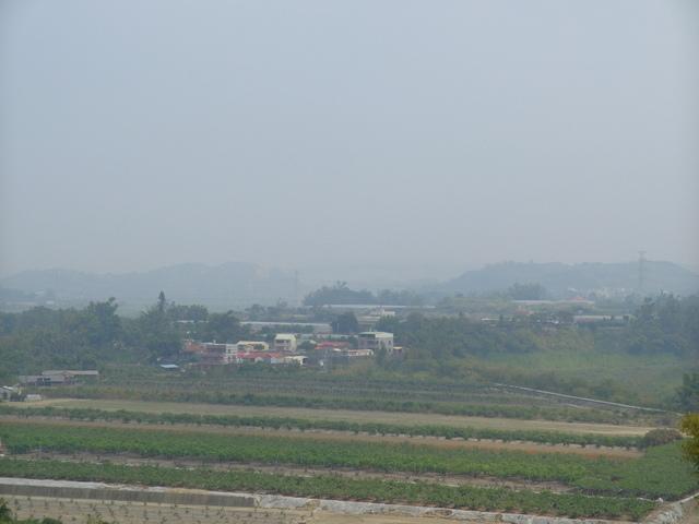 蘭科植物園  (68).JPG