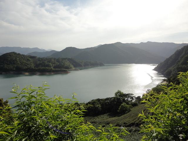 永安景觀步道 (146).jpg