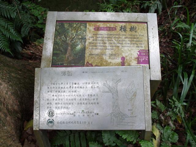 圓通寺 (104).JPG