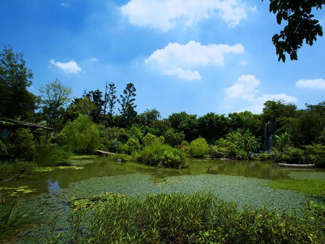 台北園外園 (36).jpg