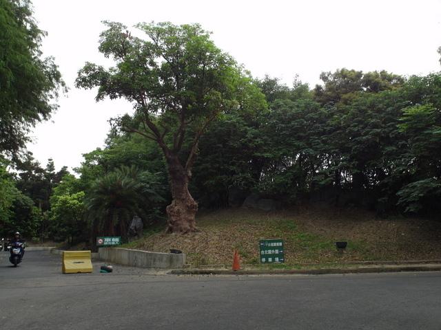 台北園外園 (41).jpg