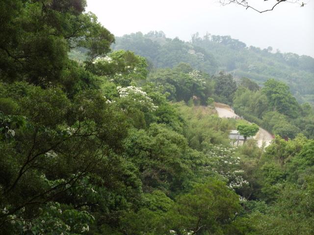 關刀山 (200).jpg