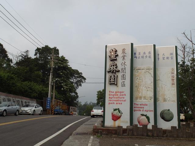 關刀山 (210).jpg