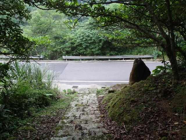 富士坪古道 (25).JPG
