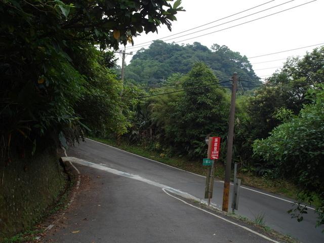 富士坪古道 (116).JPG