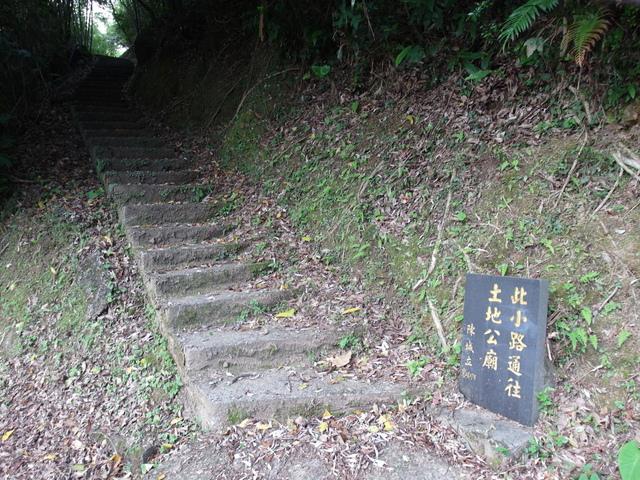 鹿崛坪古道 (77).JPG