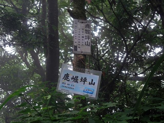鹿崛坪古道 (97).jpg