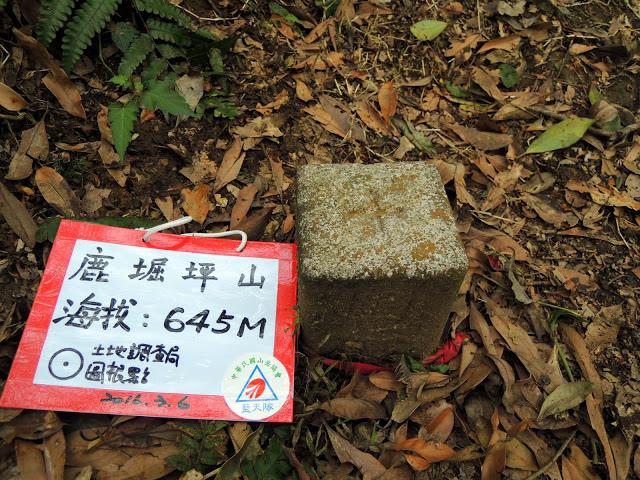 鹿崛坪古道 (109).jpg
