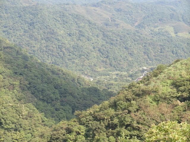大粗坑古道 (132).JPG