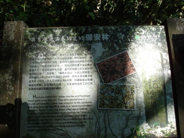紗帽山 (22).JPG