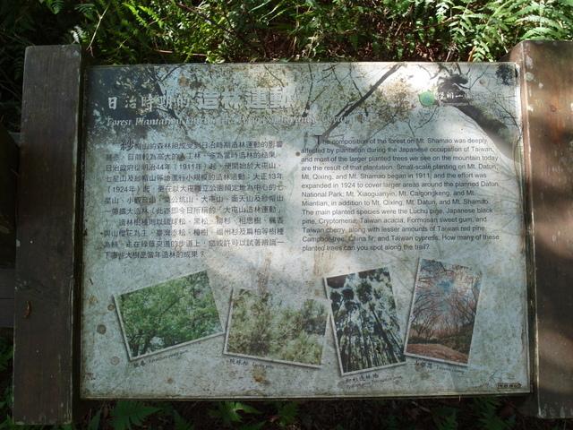 紗帽山 (79).JPG