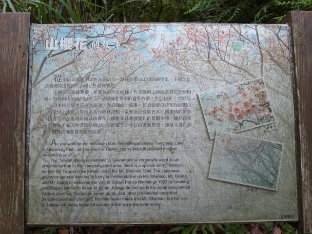紗帽山 (97).JPG