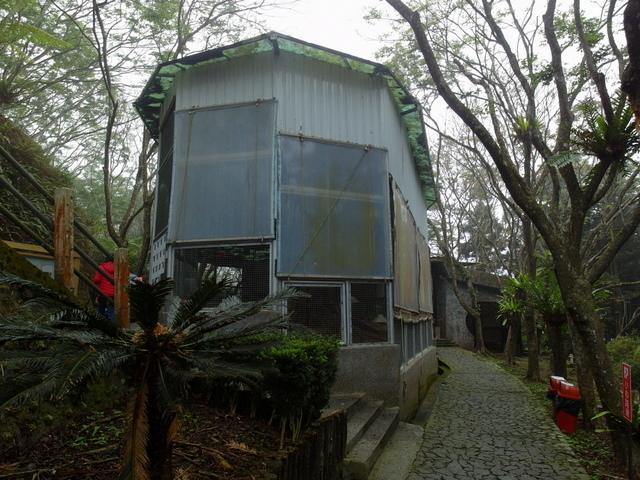 鳳凰鳥園 (11).JPG