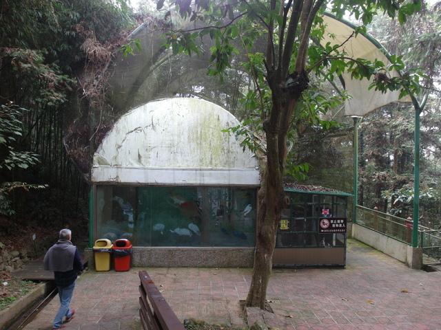 鳳凰鳥園 (18).JPG