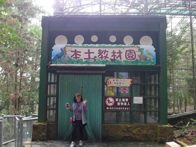 鳳凰鳥園 (24).JPG