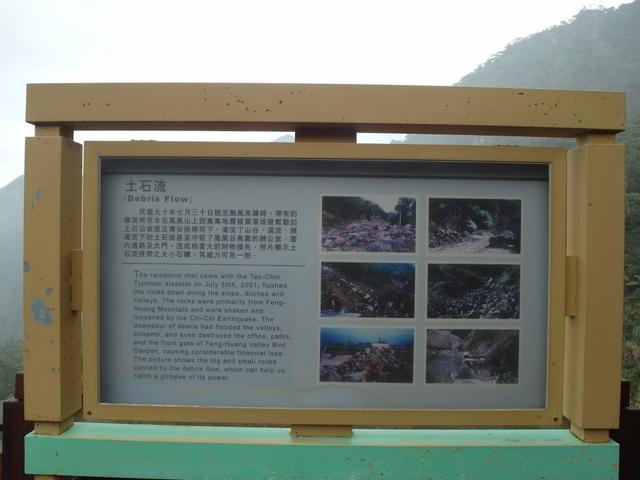 鳳凰鳥園 (47).JPG