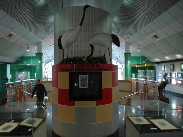 鳳凰鳥園 (58).JPG
