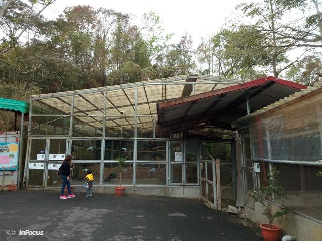 鳳凰鳥園 (100).JPG