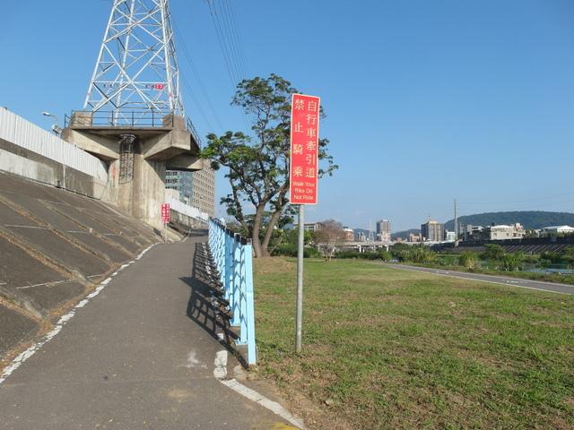 社子 (12).JPG