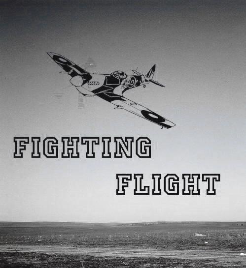 fighting flight.jpg