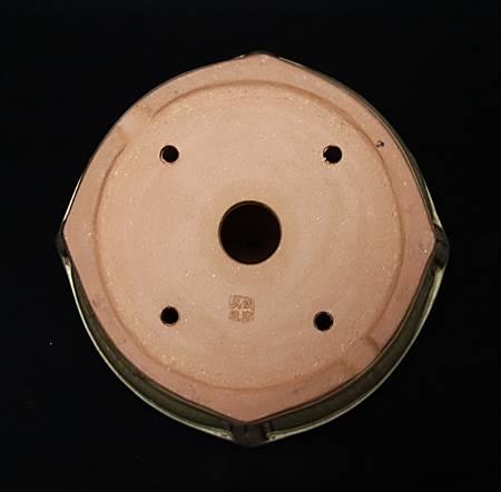 DSCF8961.jpg