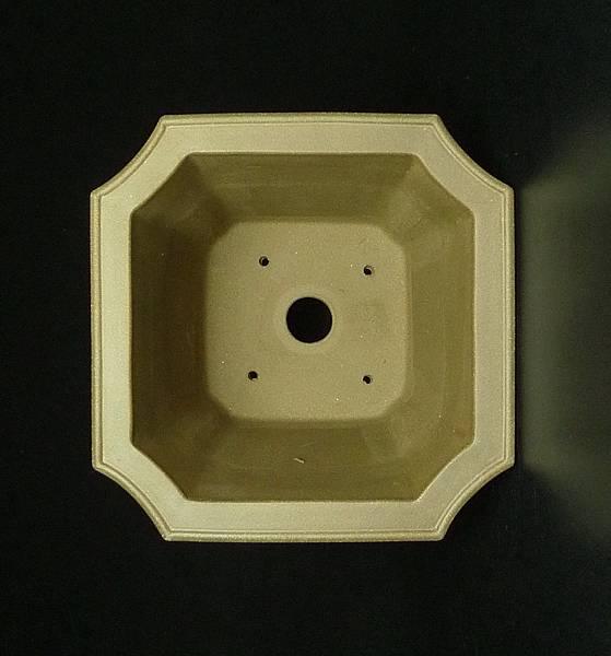 P1190019.jpg