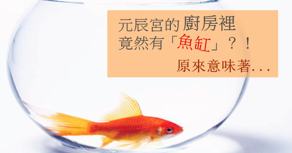 Aquarium-and-goldfish-0902185232.jpg