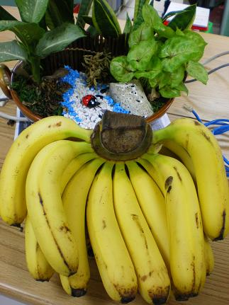 吃香蕉愛農民.JPG