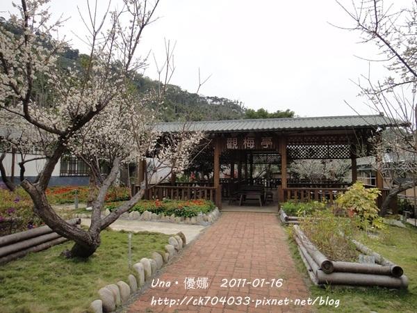 台中新社梅林親水岸1.JPG