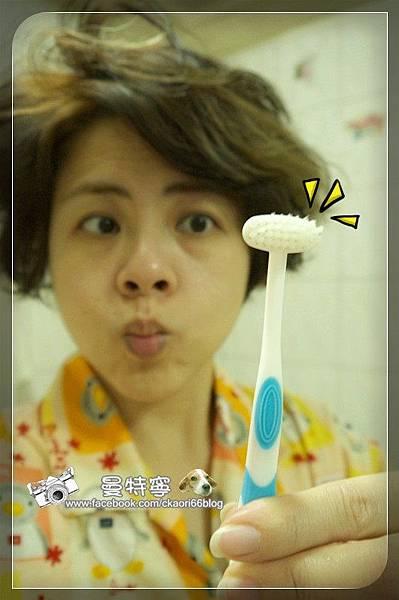 魔樂T型牙刷