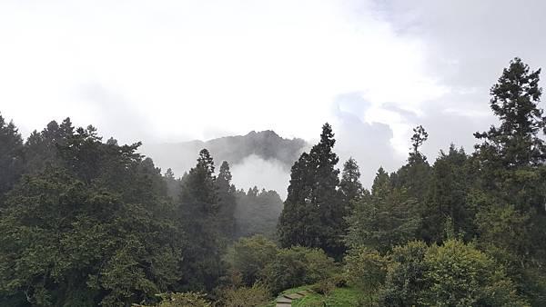 107.10.07阿里山、特富野_180911_0058.jpg