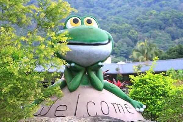 小雨蛙生態農場_190106_0012.jpg