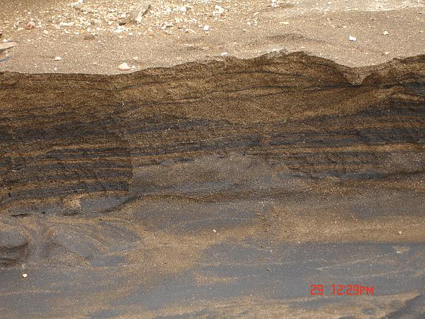 鐵砂層理.JPG