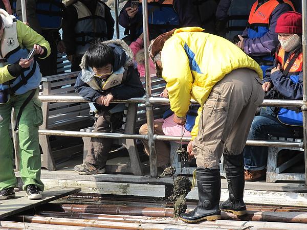 遊台江─蚵架體驗5.JPG
