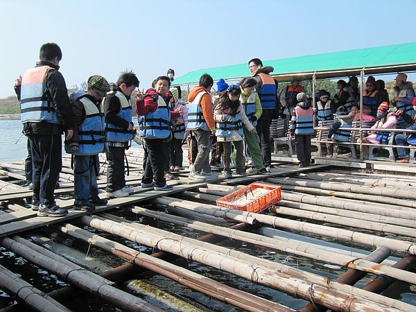 遊台江─蚵架體驗3.JPG