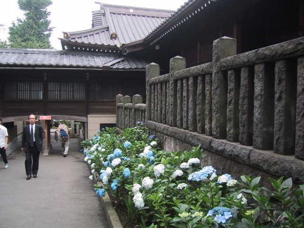 白山神社04.jpg