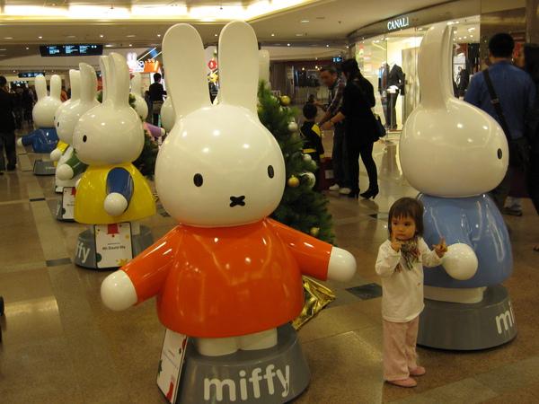2009-12 香港 019.jpg