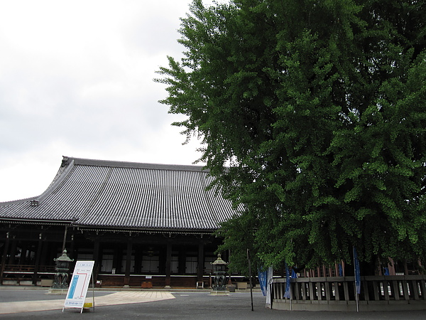 京都 004.jpg