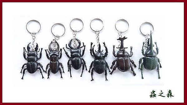 甲蟲Key