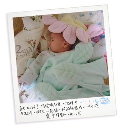 04小花QQ熊.jpg