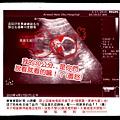 18_外星QQ熊2.jpg