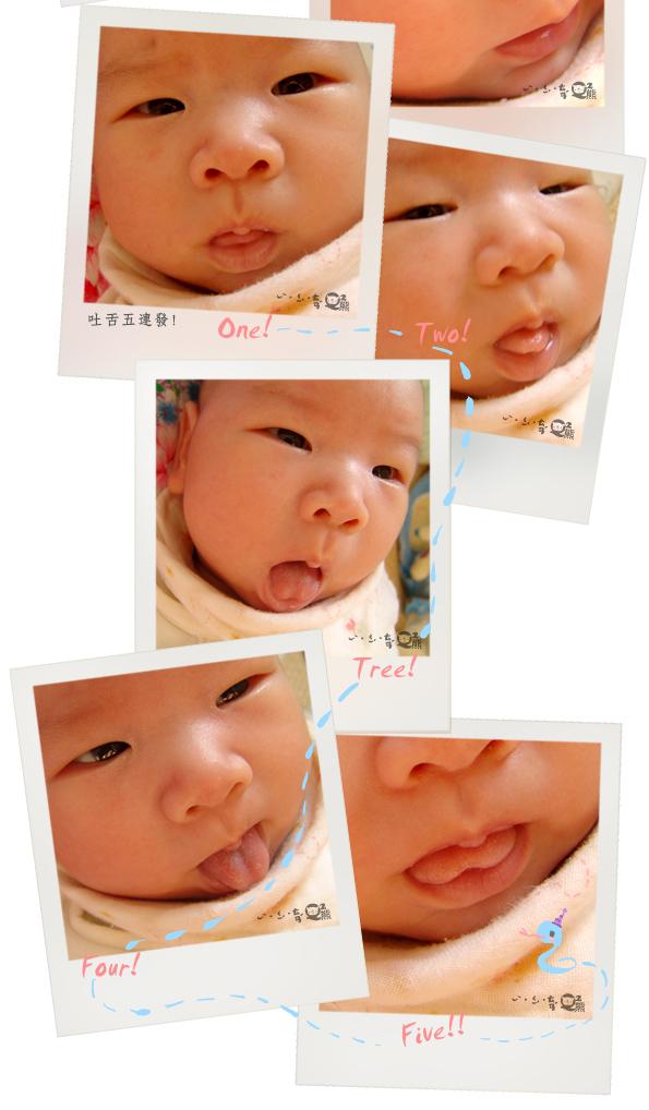QQ熊照片_05.jpg