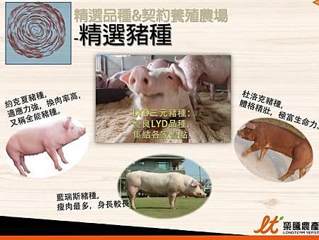 掛川酵素豚&酵素雞.2.JPG