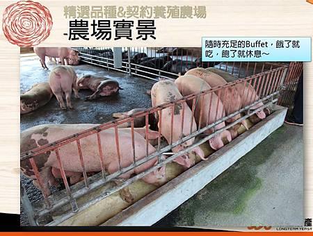 掛川酵素豚&酵素雞.6.JPG