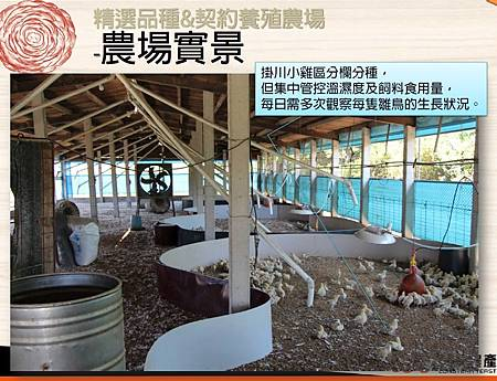 掛川酵素豚&酵素雞.10.JPG