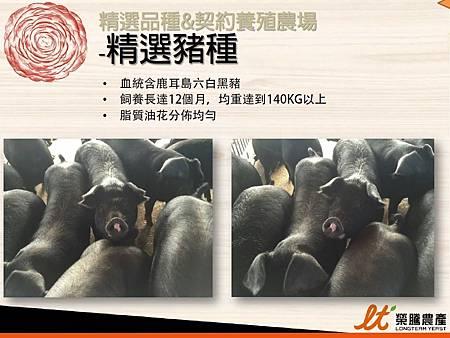 掛川酵素豚&酵素雞.22.JPG