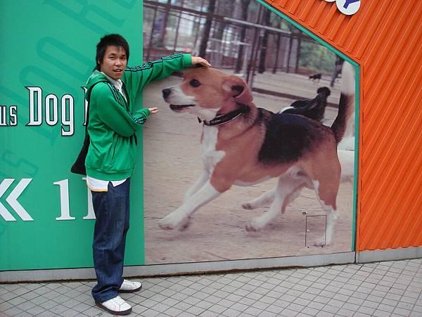 狗狗都比我大