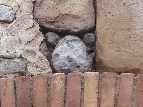 牆壁石頭很像米奇圖案