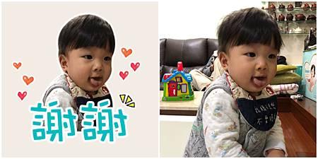 Collage_Fotor6.jpg